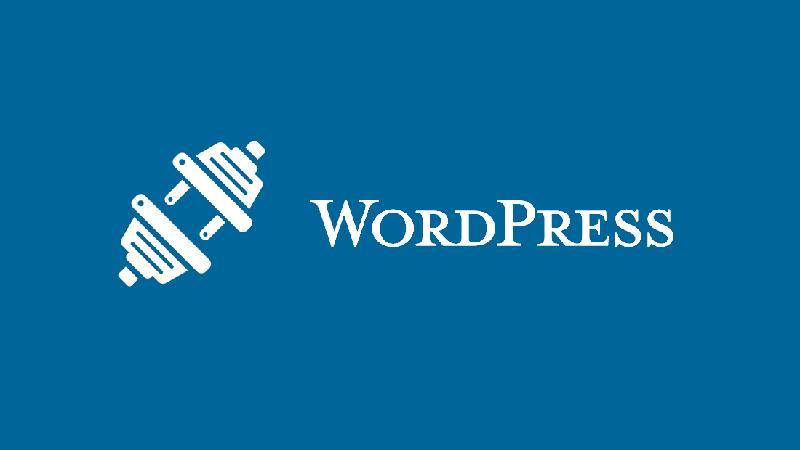 WordPress Plugins: The Creative Backbone of WordPress