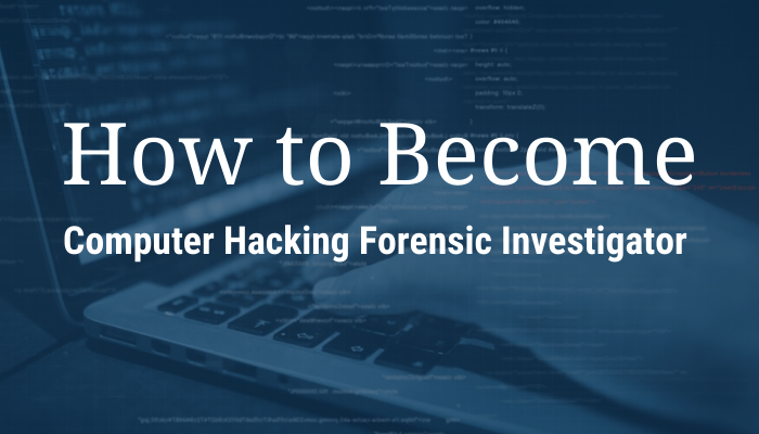 Computer Forensics and Hacking Expert Witness: Howdy, I'm a Hacker!