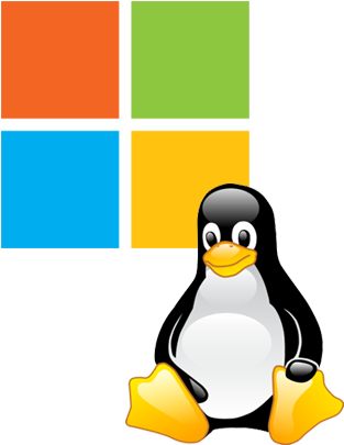 Difference Between Linux and Windows Dedicated Servers Introduction to VPS Hosting