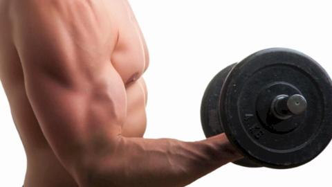 Tricep Workouts for Python-Like Arms