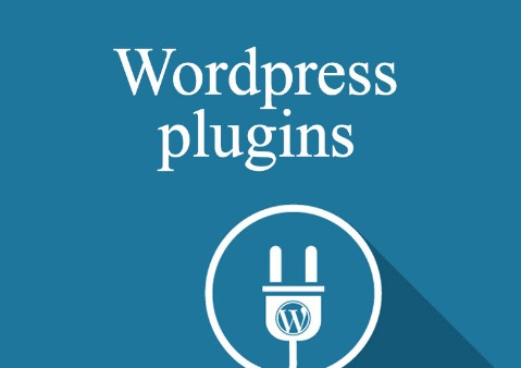 6 Essential WordPress Plugins for the Absolute Beginner
