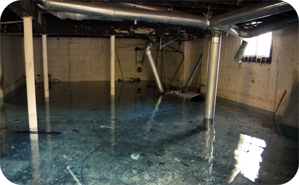 Water Or Moisture in Your Basement? How to Waterproof Your Foundation