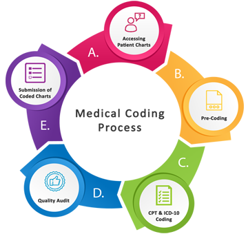 The Process of Medical Coding Certification