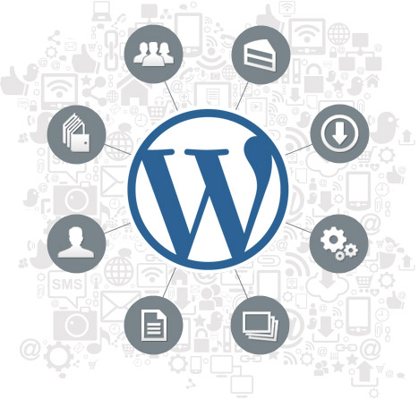 WordPress Viewed From Both Sides: Developers and Users