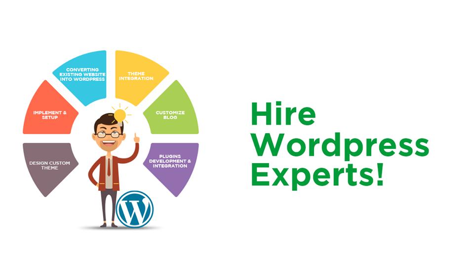 Expert WordPress Developers