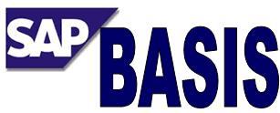 SAP Training Basics: SAP Basis