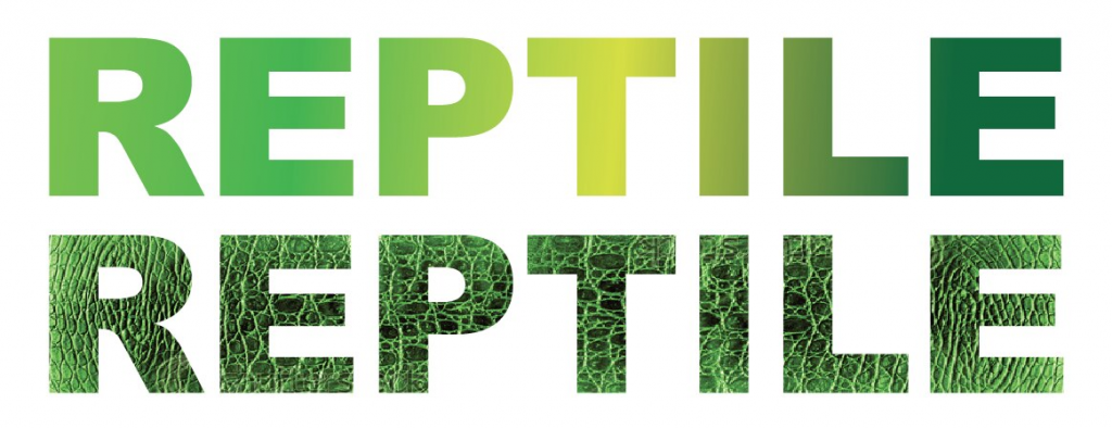 Keeping Your Pet Reptiles Happy and Healthy